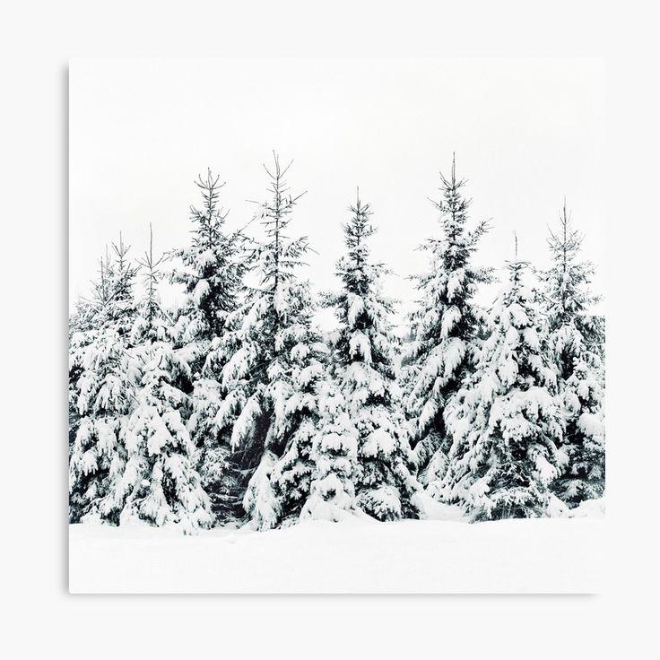 Snow Porn Landscape Photography Canvas Wall Art Print by Tordis Kayma