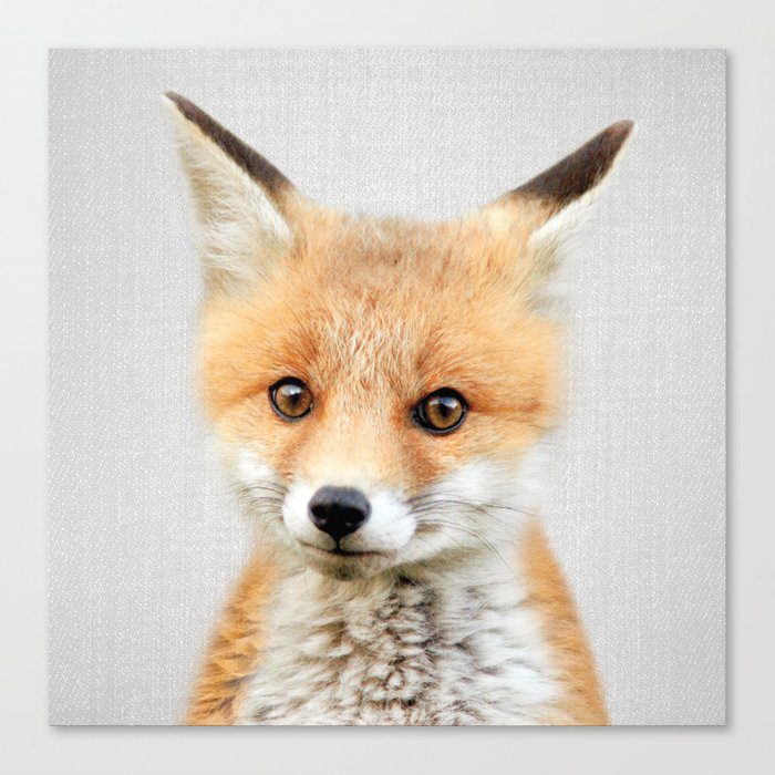 Baby Fox - Colorful Canvas Print by Gal Design
