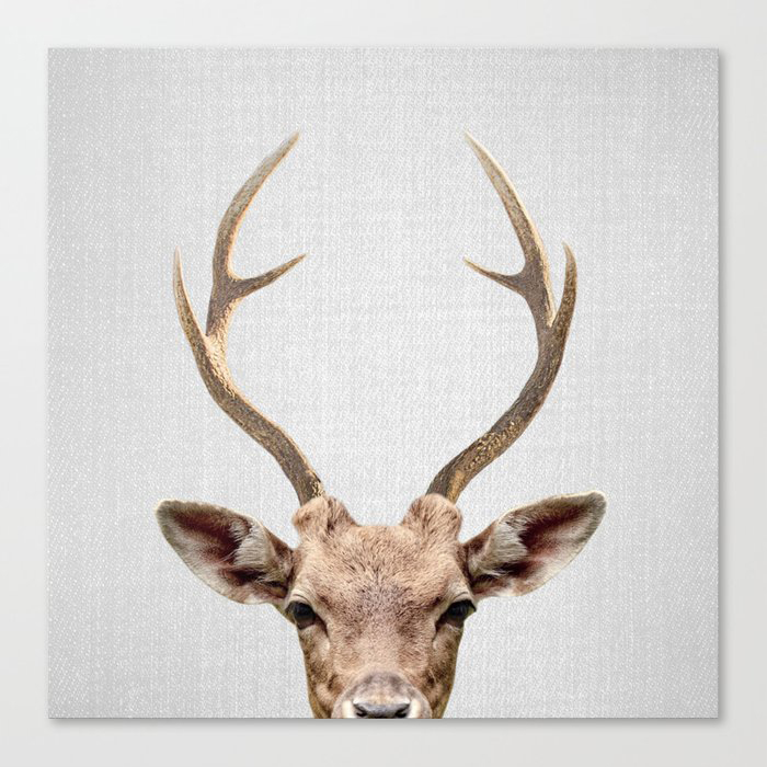Deer - Colorful Canvas Wall Art Print by Gal Design