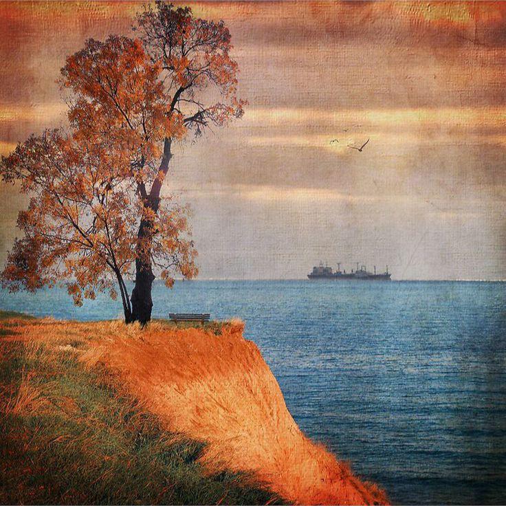 Autumn by the sea Landscape Wall Art Canvas Print Designed by Paula Belle Flores