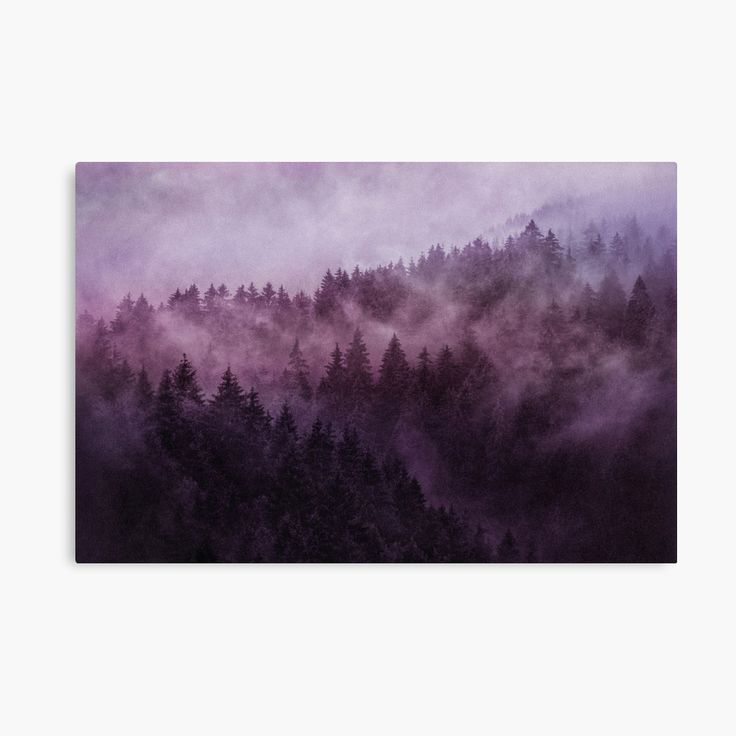 Excuse Me, I'm Lost, Laid Back Edition Landscape Photography Canvas Wall Art Print by Tordis Kayma