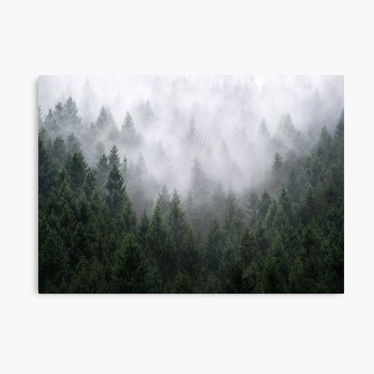 Home Is A Feeling Landscape Photography Canvas Wall Art Print by Tordis Kayma
