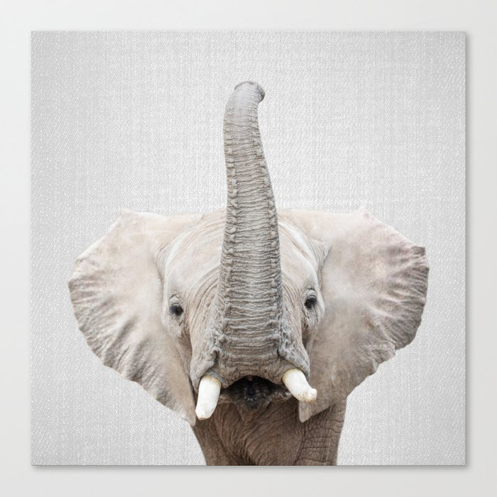 Elephant 2 - Colorful Canvas Wall Art Print by Gal Design