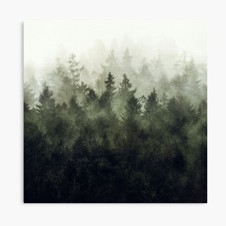 The Heart Of My Heart Green Mountain Edition Landscape Photography Canvas Wall Art Print by Tordis Kayma