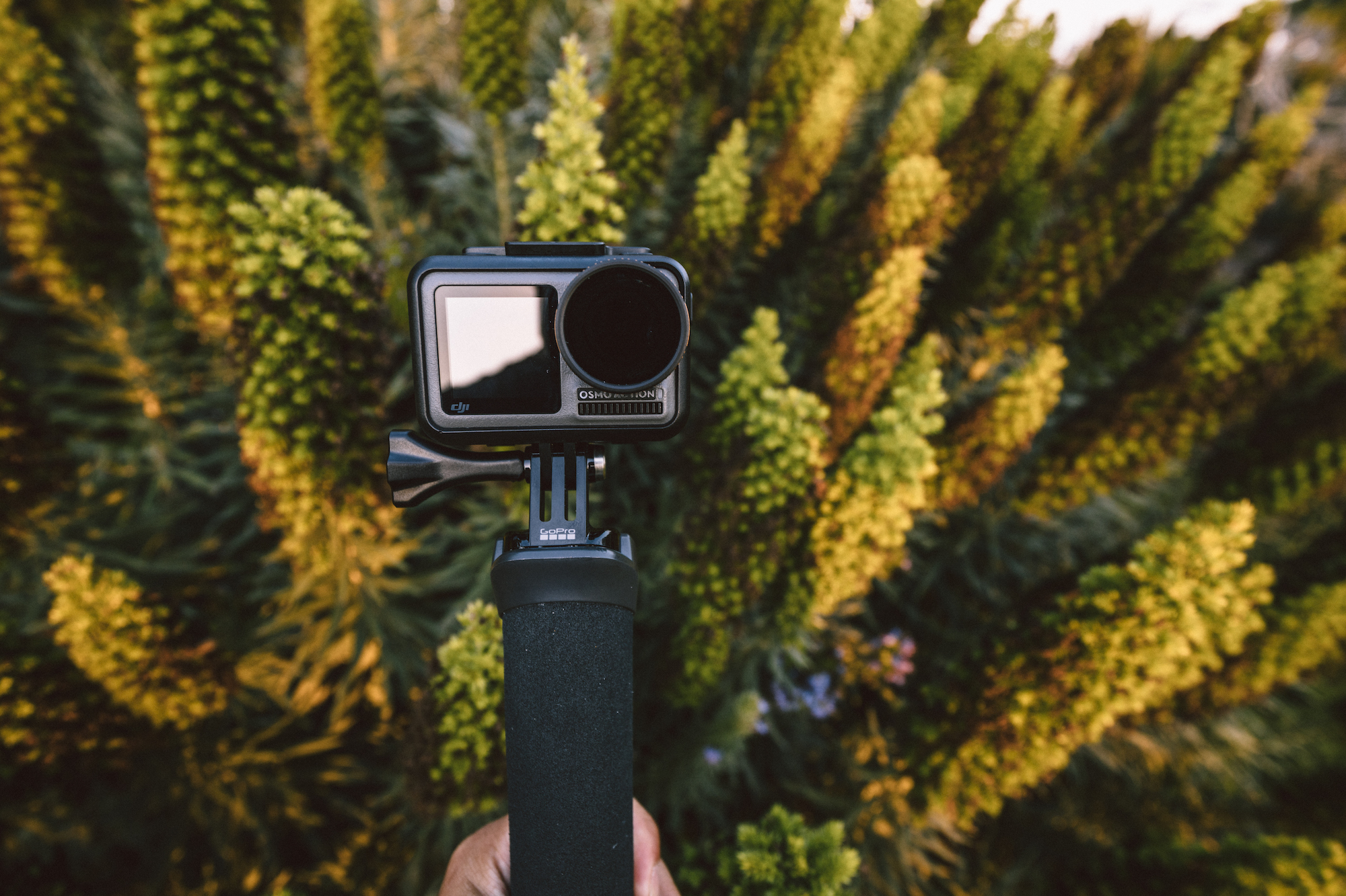 Osmo Action Cinematic Settings