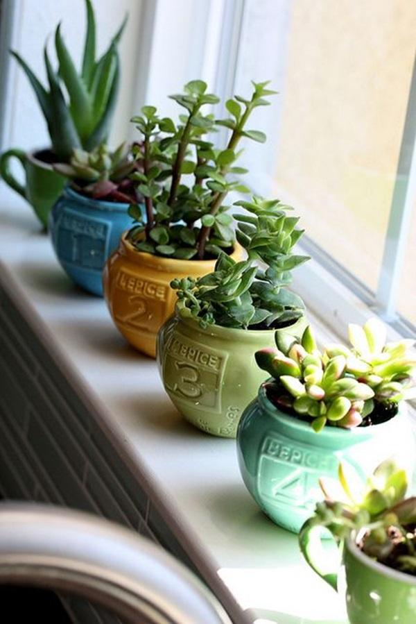 Indoor Gardening Tips