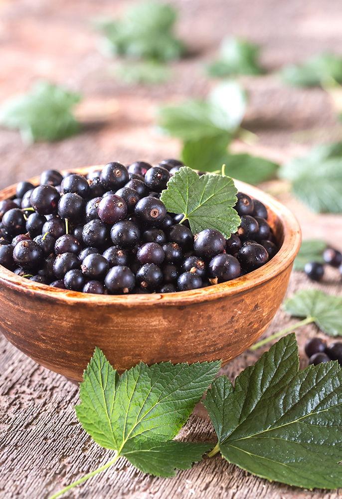 blackcurrants in a bowl for blackcurrant e-liquids