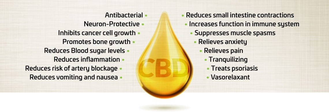 CBD Benefits for Daily Health