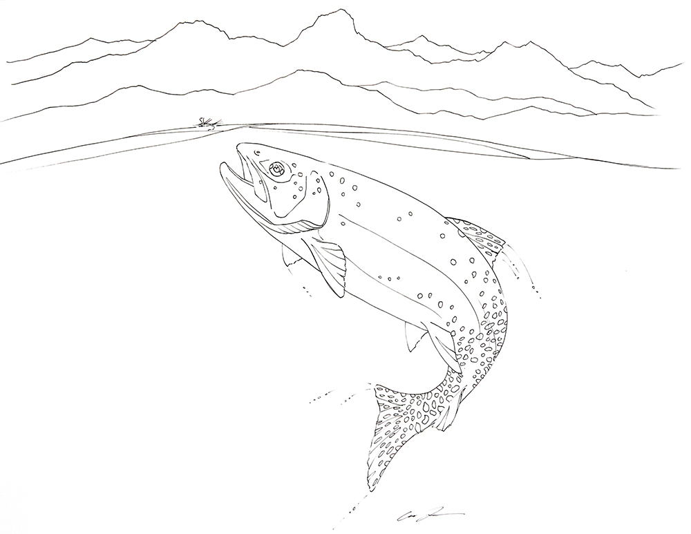 Freshwater Fish Coloring Pages Perfect Coloring Freshwater Fish ... | 773x1000