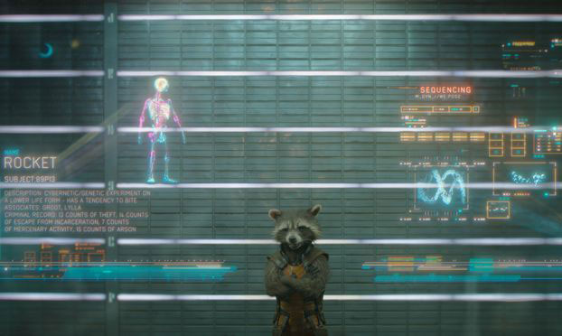 Front Profile of Rocket Racoon from Guardians of the Galaxy