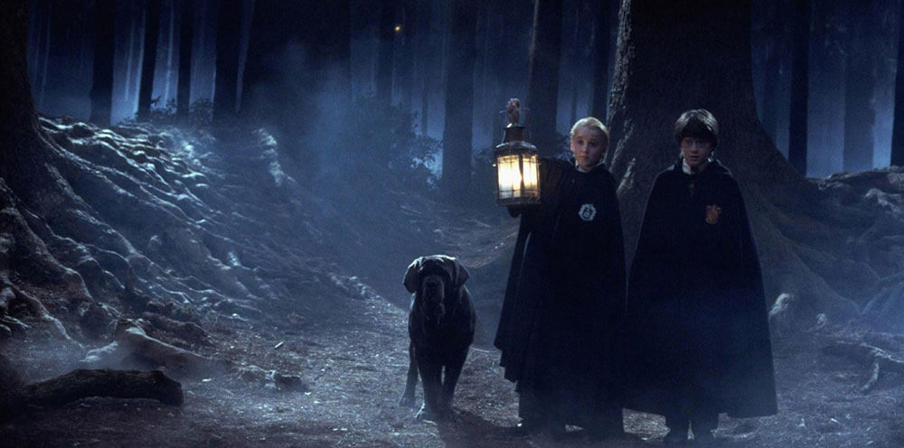 Harry Potter, Malfoy and Hagrid's Dog walking through the Forbidden Forest