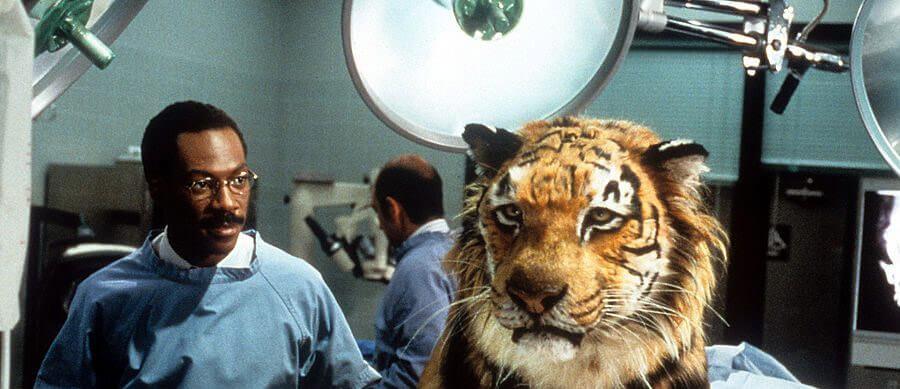 Eddie Murphy Dr. Dolittle Tiger