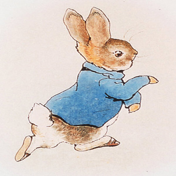 Classic Peter Rabbit Illustration
