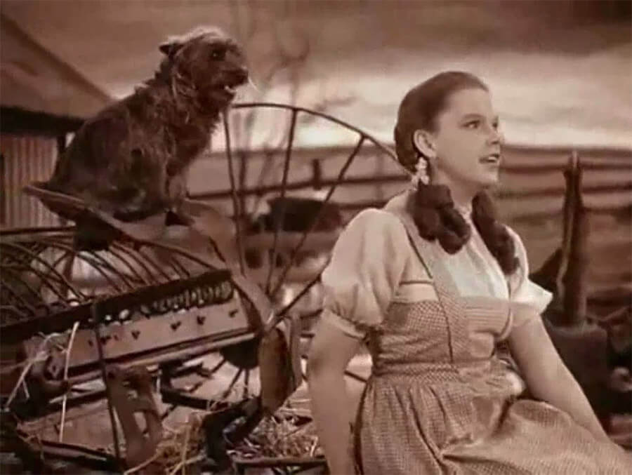 "Dorothy and Toto ""Somewhere Over the Rainbow"""