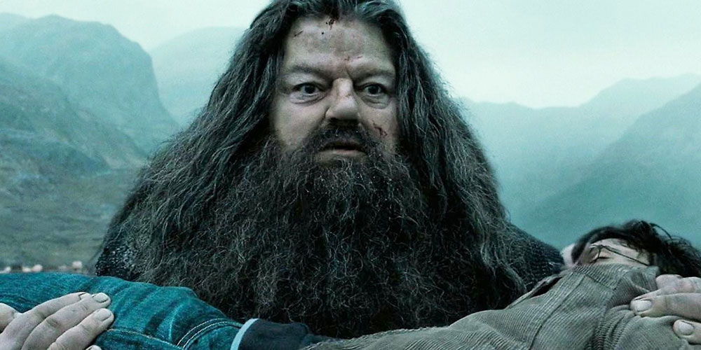 Hagrid Carrying Harry Potter in the Final Harry Potter Film
