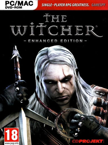 The Witcher Console Game
