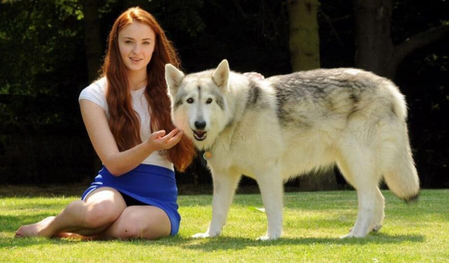 Sansa Stark and Lady