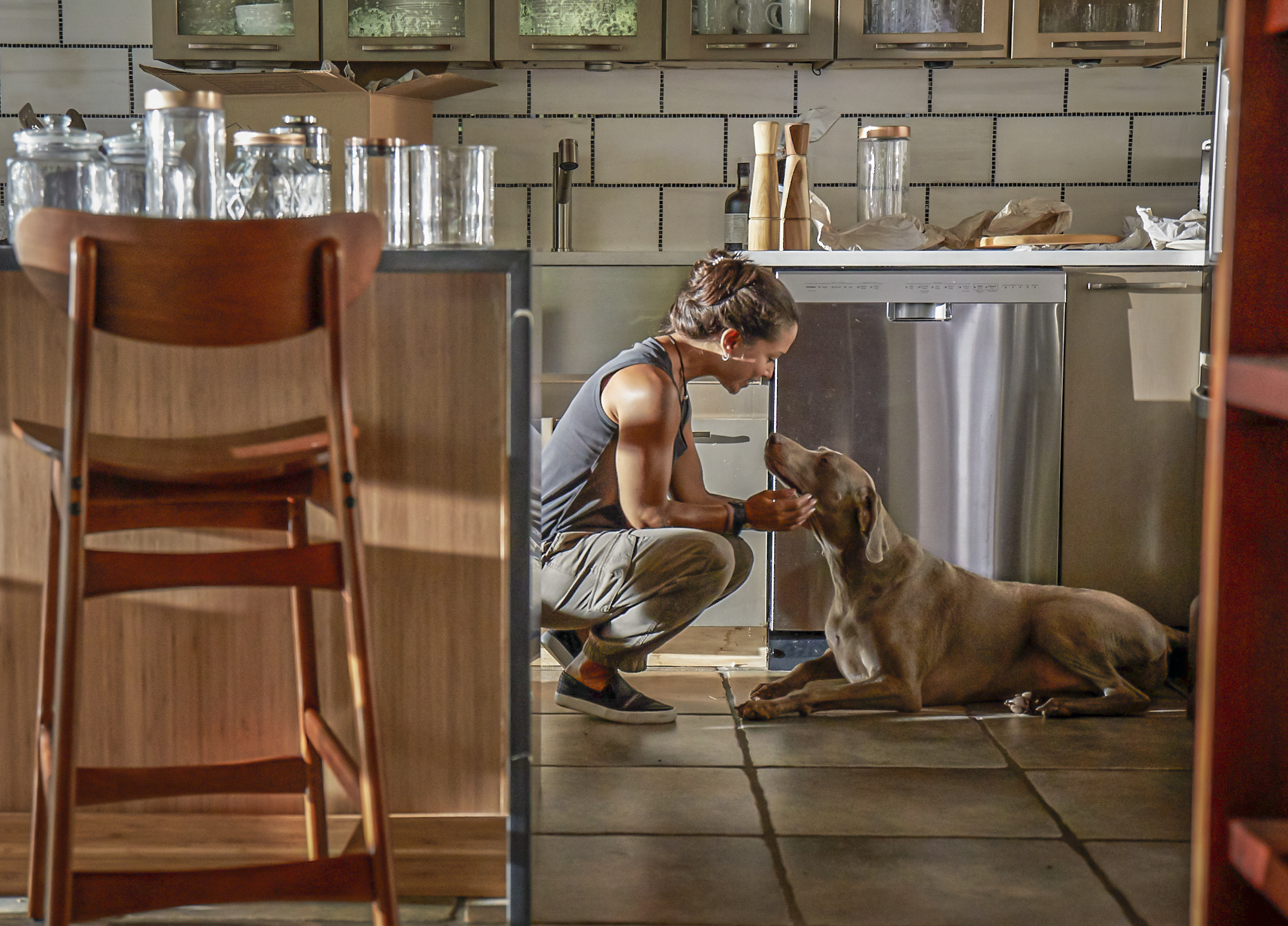 Maintaining a healthy routine for your dog | Schedules