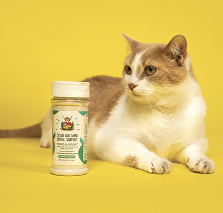 Immune Boosting Goodies For Your Kitty