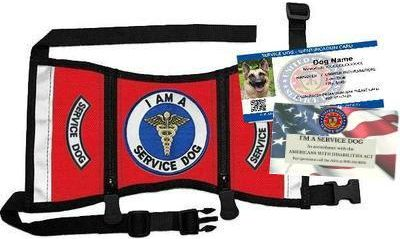 Ready-To-Wear Service Dog Starter Kit