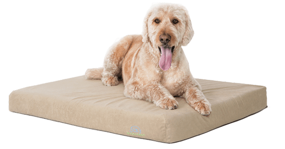 buddyrest comfort deluxe dog bed