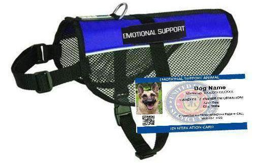 EMOTIONAL SUPPORT DOG MESH VEST STARTER KIT