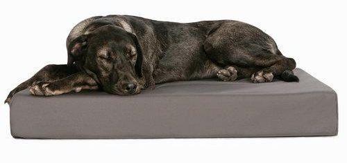 TOUGH PUP ORTHOPEDIC MEMORY FOAM DOG BED