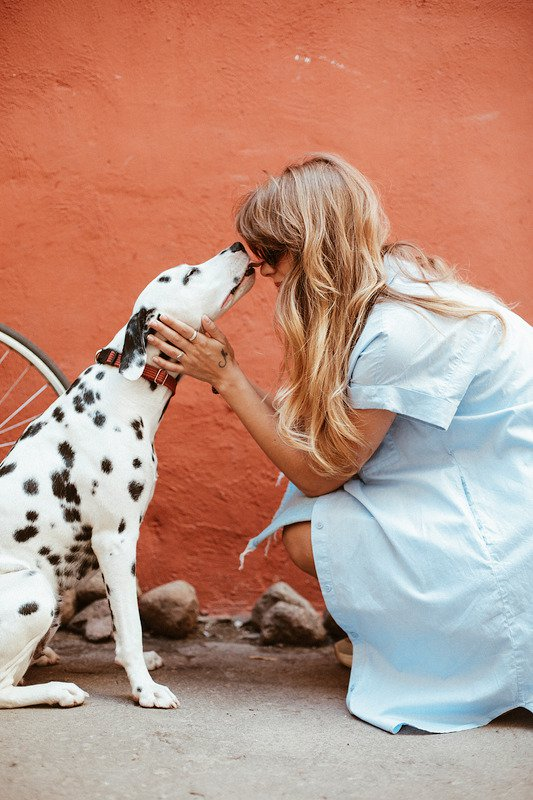 Dalmatian being pet by their owner next to a red wall