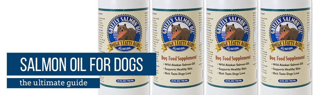 salmon oil for dogs the ultimate guide