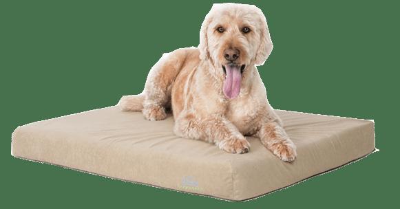 BUDDYREST COMFORT DELUXE MEMORY FOAM DOG BED