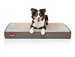 Brindle 4 inch memory foam orthopedic dog bed