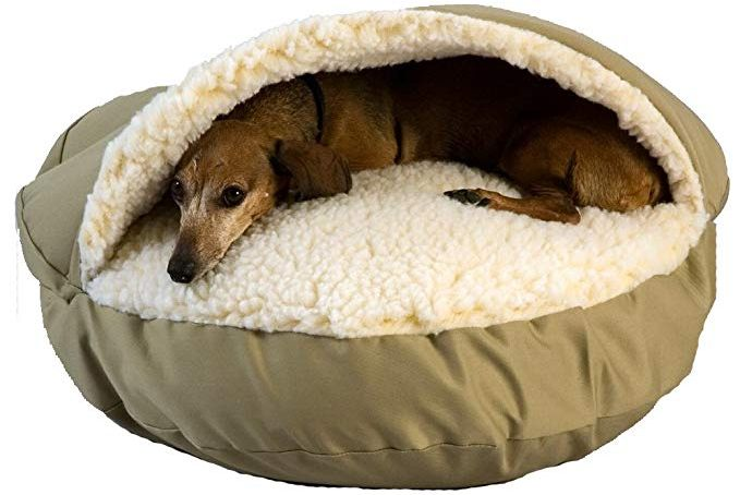 cozy cove dog bed