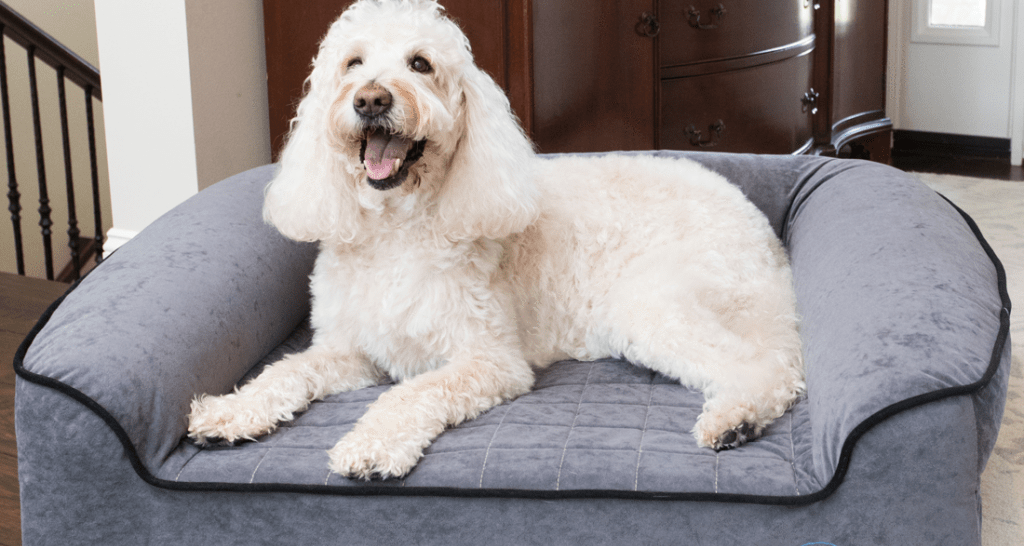 BUDDYREST ROMEO ORTHOPEDIC BOLSTER DOG BED