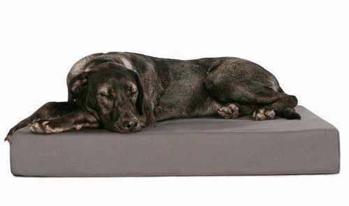 tough pup orthopedic dog bed