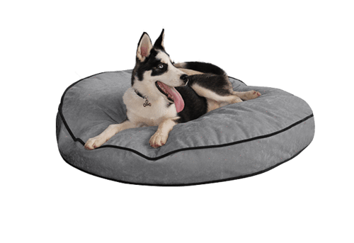 pup iq round dog bed