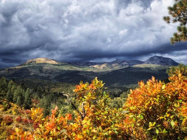Photo by Sarah Shuel - Durango, CO