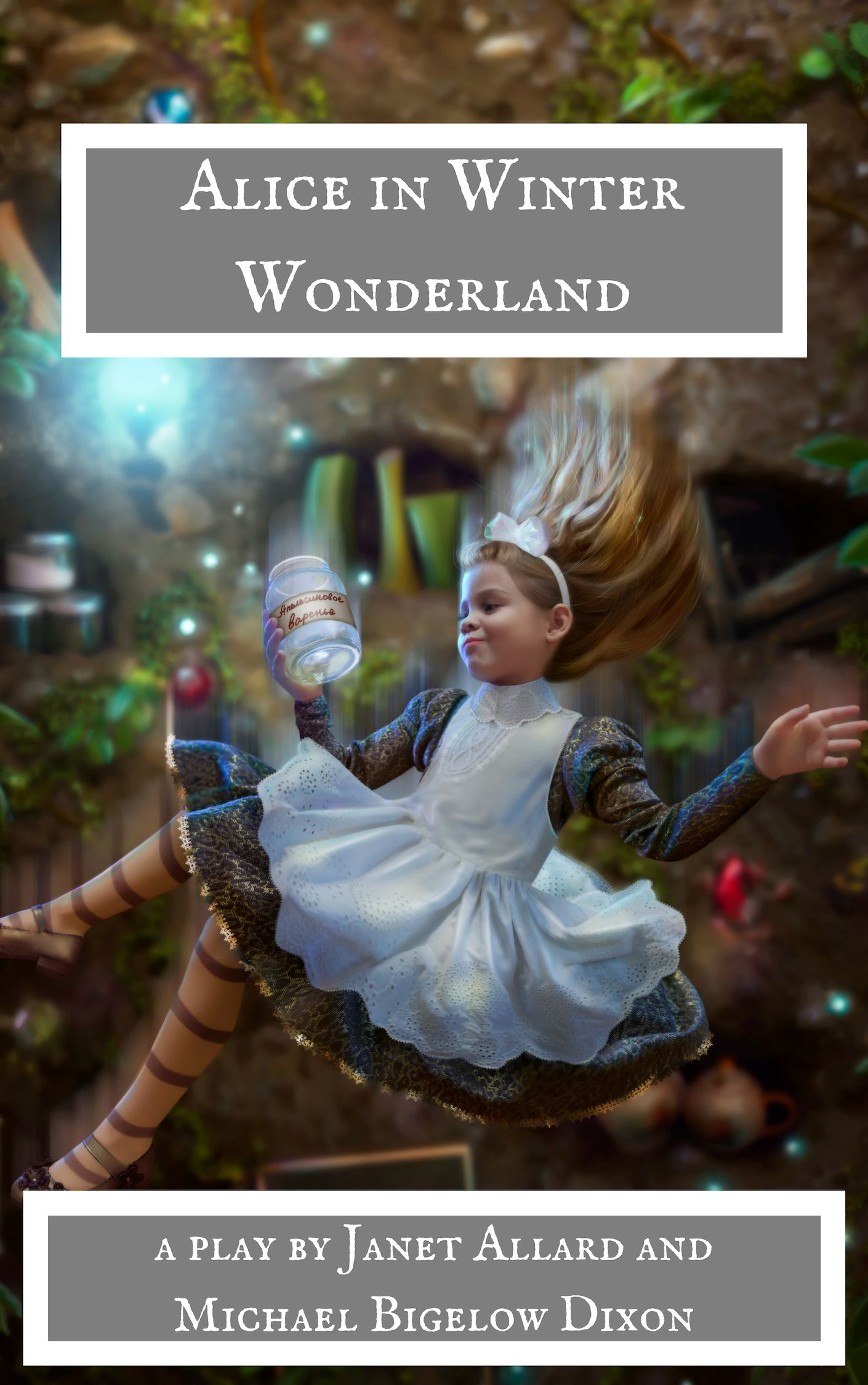 Alice in Winter Wonderland by Janet Allard and MIchael Bigelow Dixon