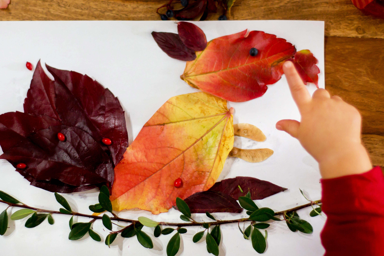 Un écureuil en collage de feuilles d'automne