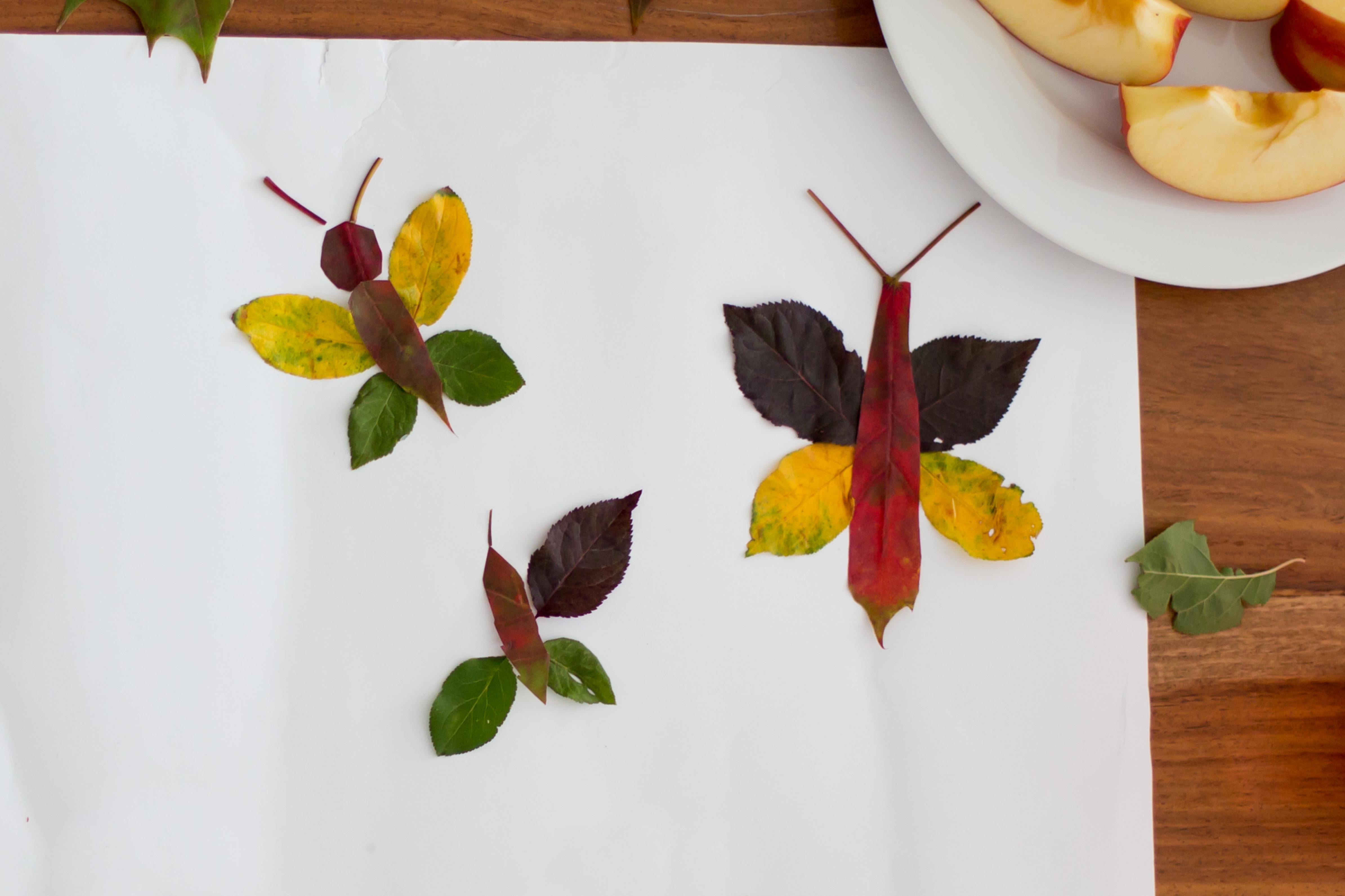 Collage de papillons en feuilles d'automne