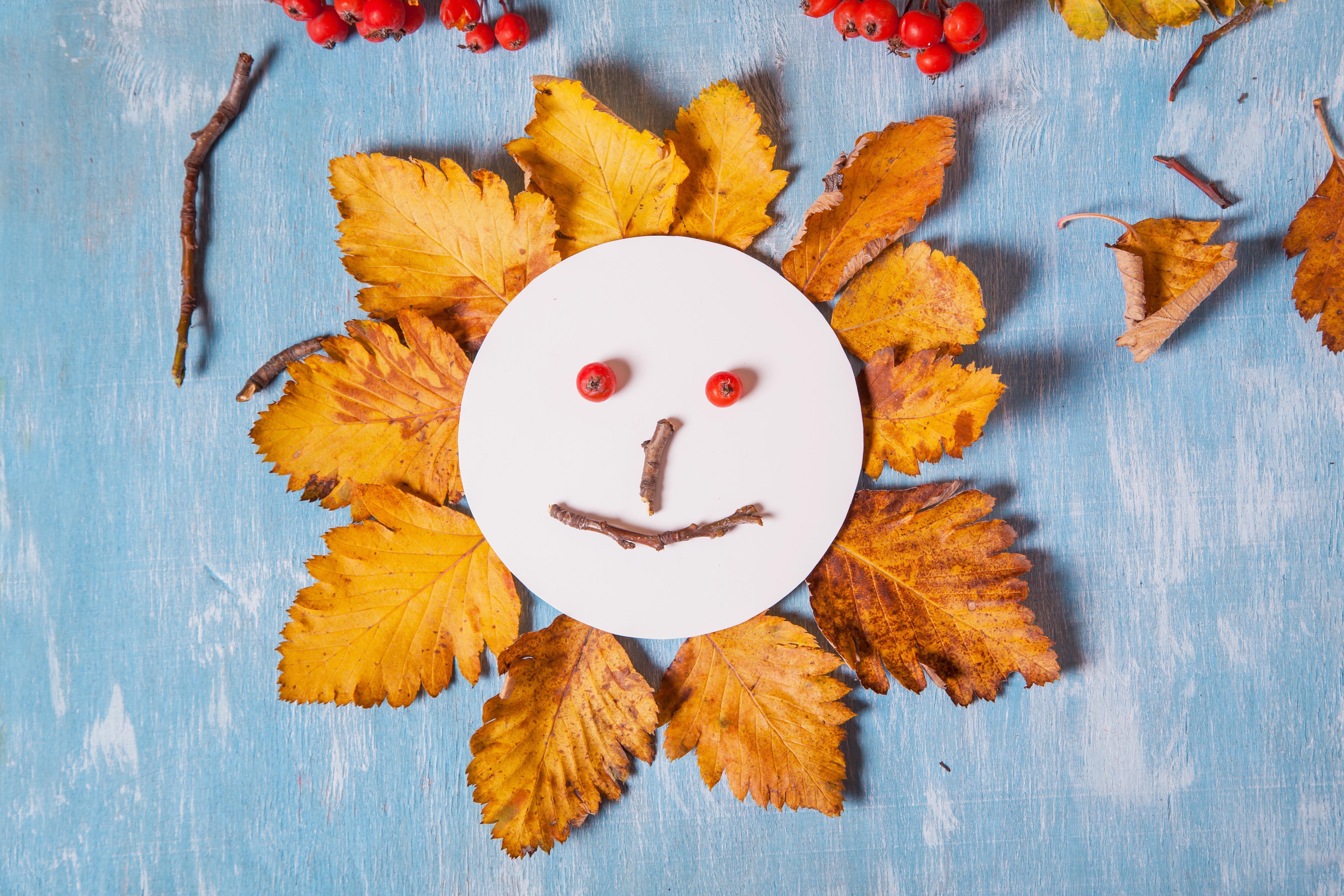 Collage de soleil en feuilles d'automne