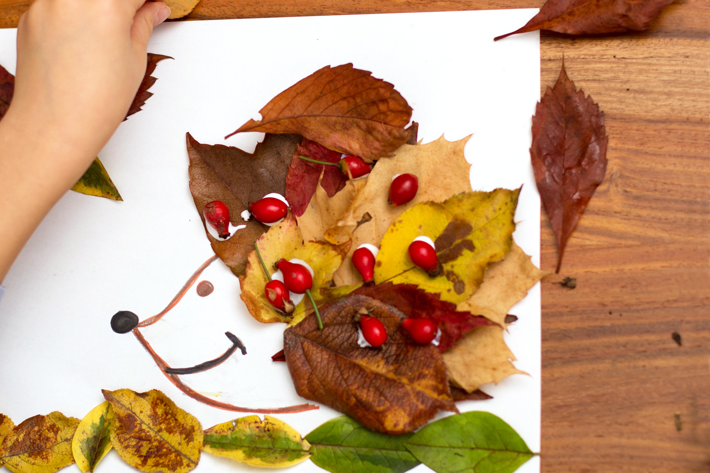 Collage de hérisson en feuilles d'automne