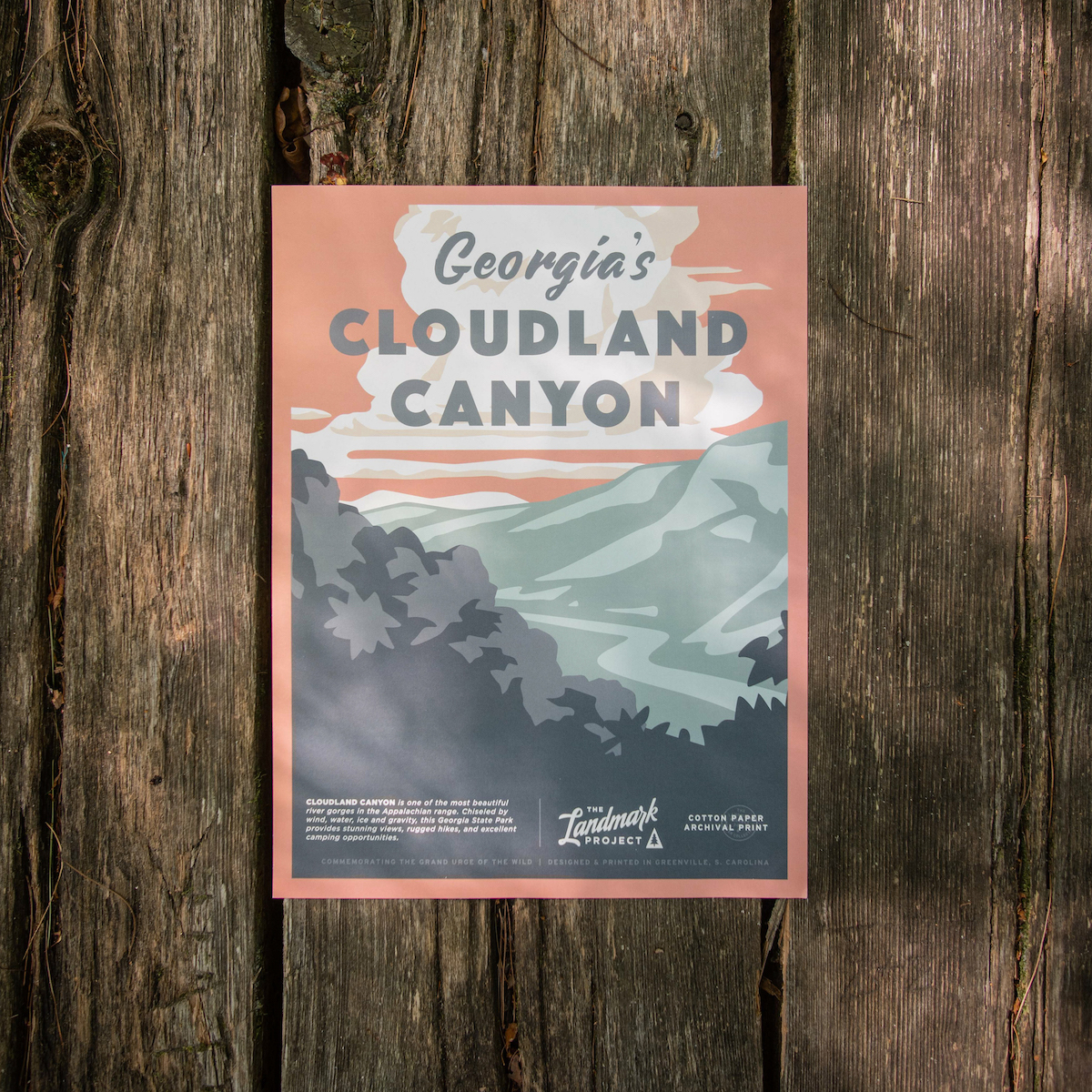 Cloudland Canyon Poster