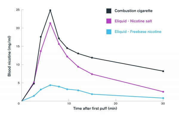 Nicotine Salt absorbtion rate