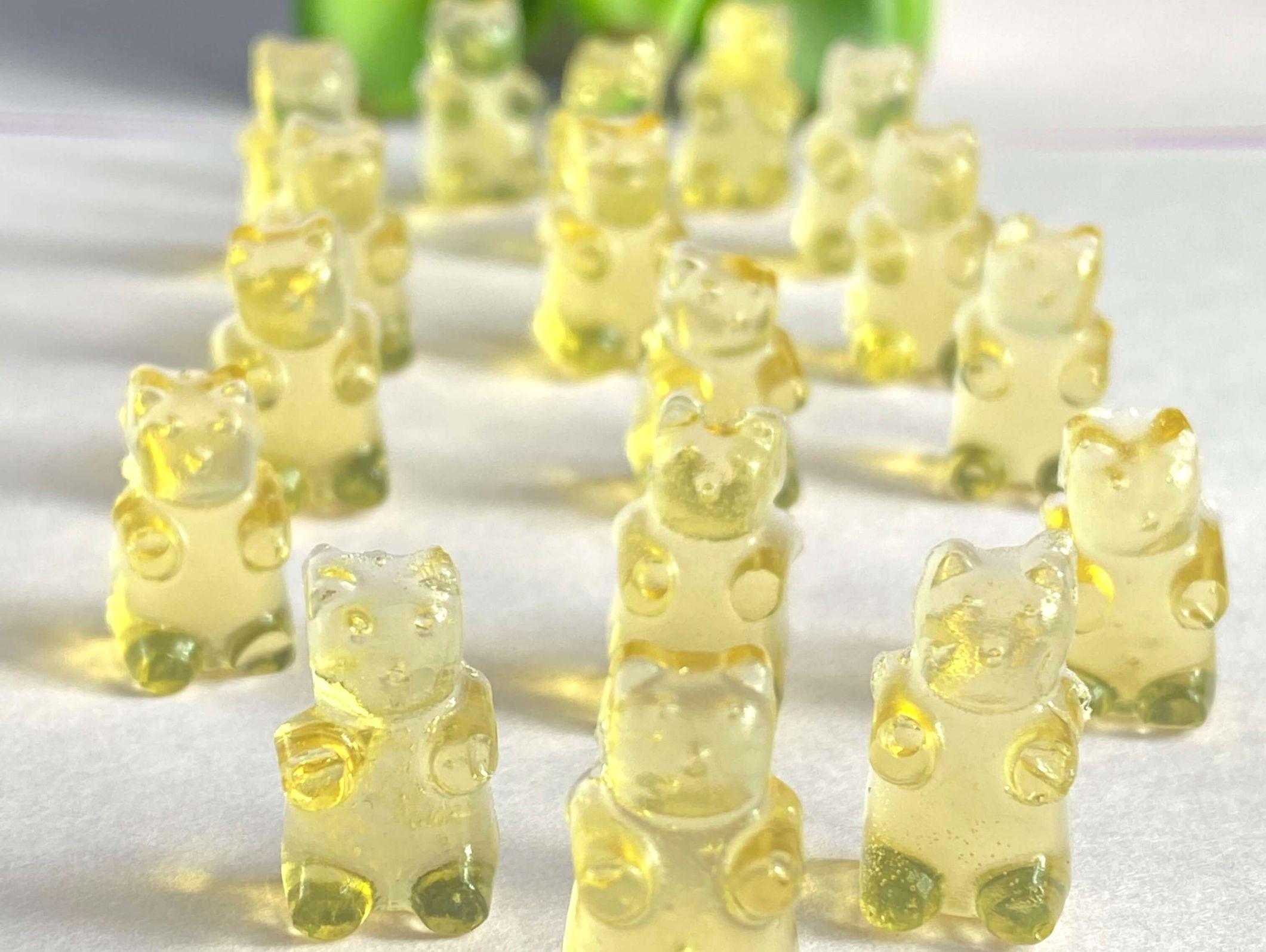 Gelatin Gummy bear dog treats on table