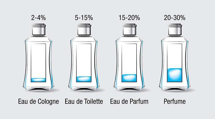 Eau de parfum fragrance chart